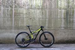 custome bikes